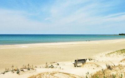 Sauble Beach Office